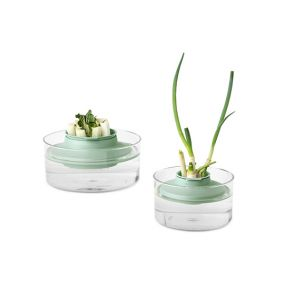 Brabantia Herbs and Vegetables Regrow Kit
